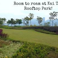 Rooftop splashing and strolling at the brand new Kai Tak Cruise Terminal Park!