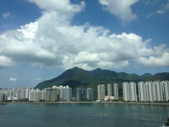 Accidental Tai-Tai Hyatt Sha Tin