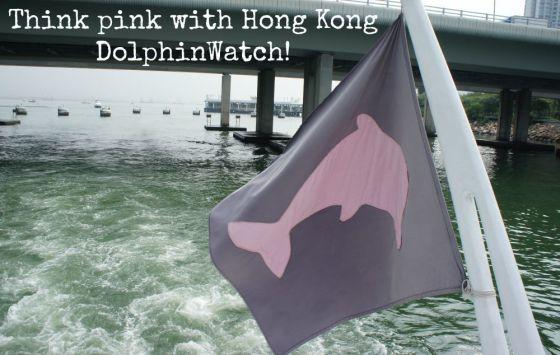 Hong Kong DolphinWatch