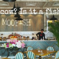 What's in a name? MooFish Discovery Bay family dining review
