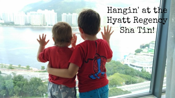 Accidental Tai Tai Hyatt Sha Tin Review