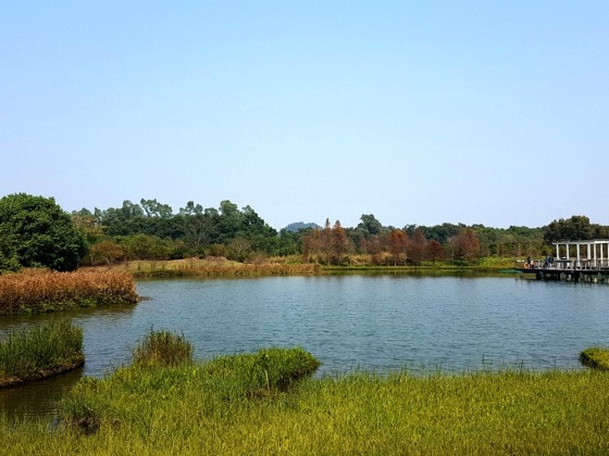 Hong Kong Wetland Park view